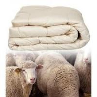beter_slapen - Dekbed Merinos wol